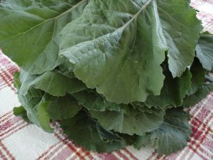 Collard greens on tablecloth.