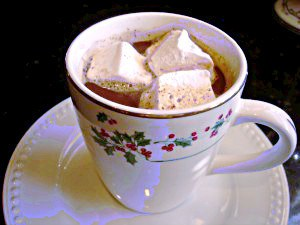 Hot Chocolate ~ Syrup and Biscuits