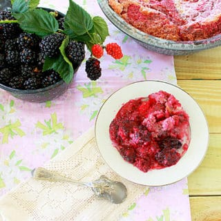 In the Beginning,There Were Blackberries (Recipe: Blackberry Cobbler)