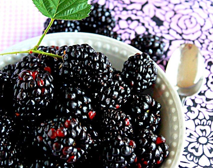 Blackberries in bowl on table.