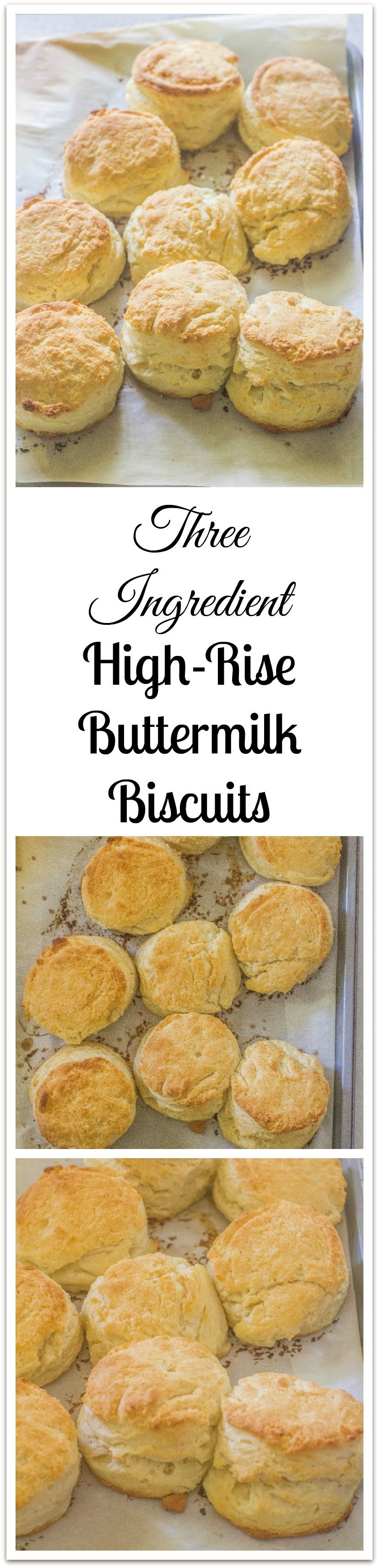 A hot  buttermilk biscuit, covered in gravy, syrup, jelly  or dripping in butter, is just about as good as food gets. #ButtermilkBiscuits