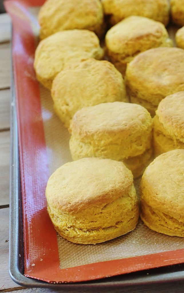 Pumpkin Pie Biscuits. All the flavors of pumpkin pie folded into buttermilk biscuit dough: pumpkin, honey and spices.