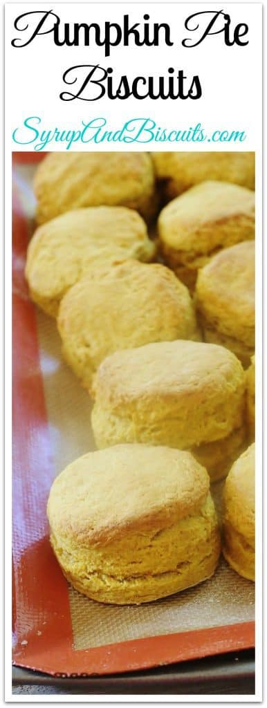 Pumpkin Pie Biscuits. All the flavors of pumpkin pie rolled into an easy to make biscuit.