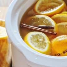 Slow Cooker Hot Mulled Apple Cider. Apple cider with oranges, lemons, brown sugar, cloves and cinnamon sticks