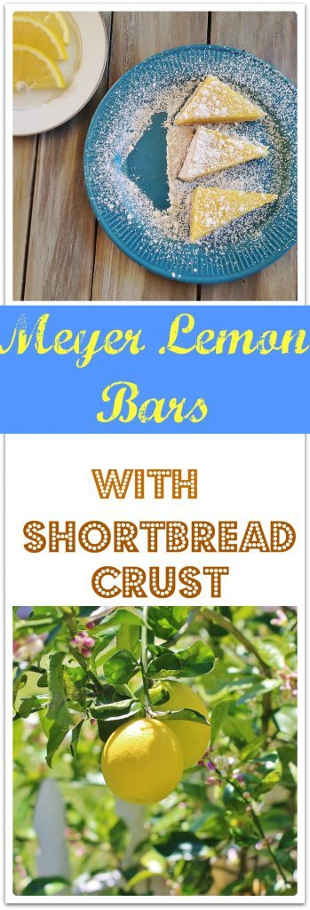 Meyer Lemon Bars.  A sweet and tangy lemon filling on a shortbread crust.